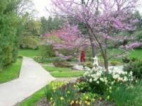 jardinería en mayo