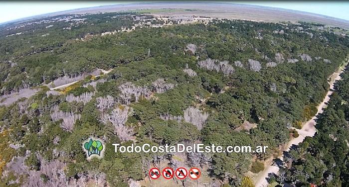 Costa del Este desde el aire