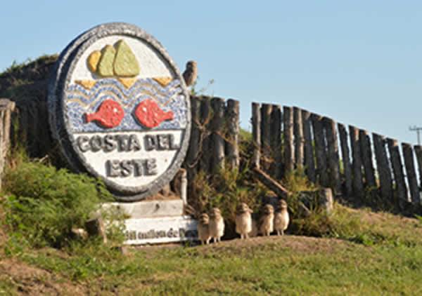 costa-del-este-25mayo