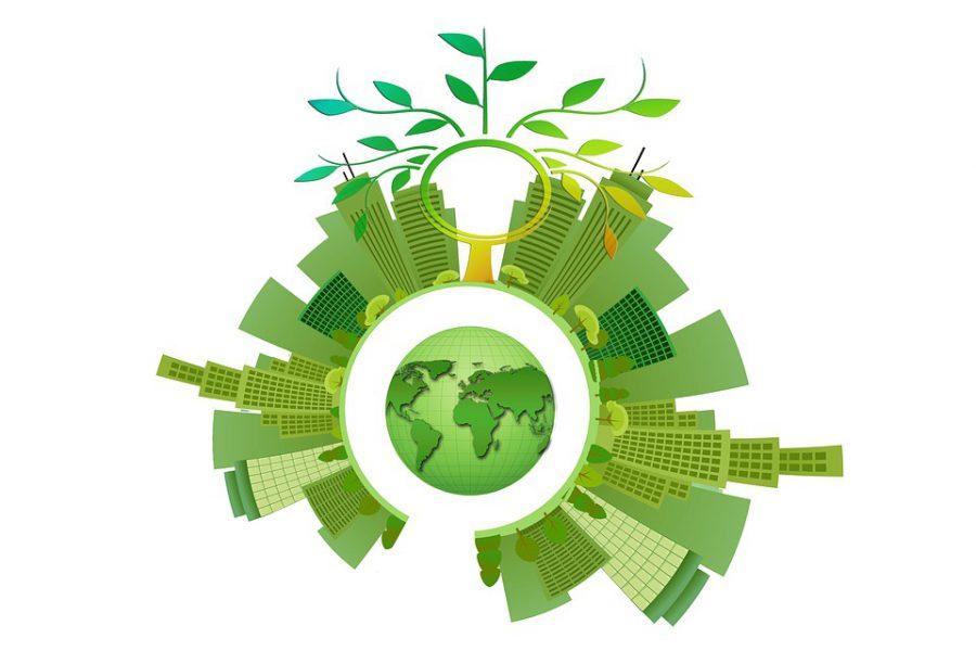 Sostenibilidad, Energía, Árbol, Estética